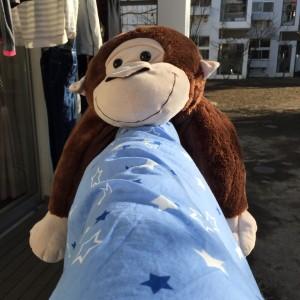 20150114-Gorila
