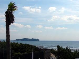 ファーム近くの海岸から見える江ノ島