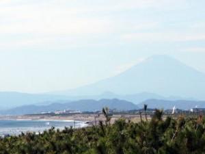 ファーム近くの海岸から見える富士山